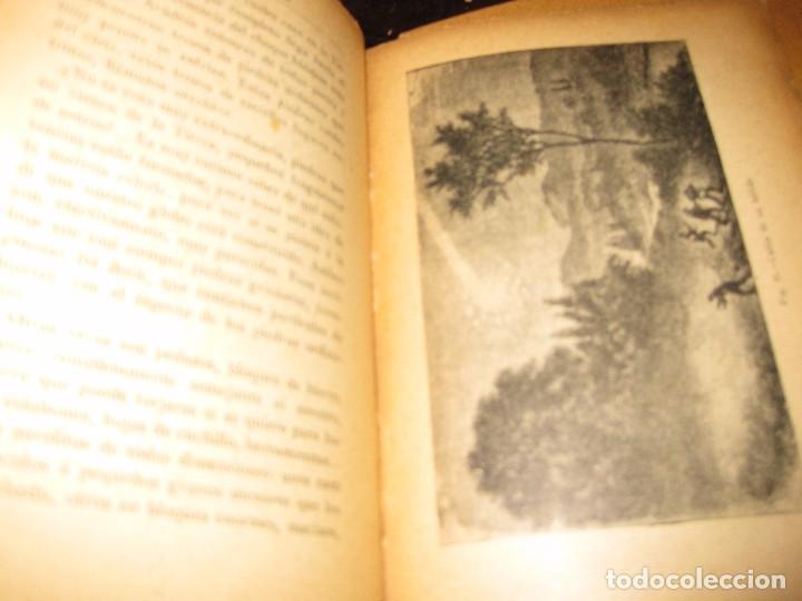 Libros antiguos: antiguo libro astronomia popular . c. Flammarion , tomo II . grabados ed f, granada años 20? - Foto 5 - 75739323