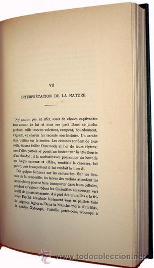 Libros antiguos: 1936 - ENTOMOLOGIA - LA VIDA DEL NATURALISTA HENRY FABRE - Imprescindible - Foto 5 - 24627309
