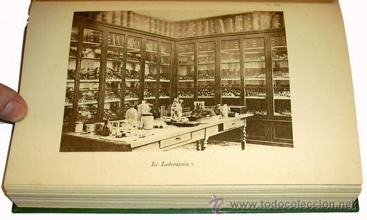 Libros antiguos: 1936 - ENTOMOLOGIA - LA VIDA DEL NATURALISTA HENRY FABRE - Imprescindible - Foto 3 - 24627309