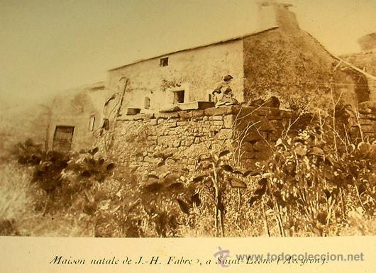 Libros antiguos: 1936 - ENTOMOLOGIA - LA VIDA DEL NATURALISTA HENRY FABRE - Imprescindible - Foto 2 - 24627309