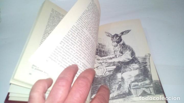 Libros antiguos: GOYA-BIBLIOTECA HISTORICA DE GRANDES PERSONAJES-URBION-ILUSTRACIONES - Foto 11 - 131084072