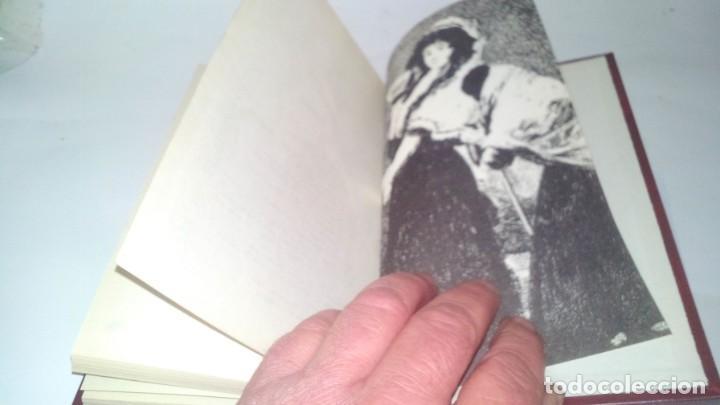 Libros antiguos: GOYA-BIBLIOTECA HISTORICA DE GRANDES PERSONAJES-URBION-ILUSTRACIONES - Foto 14 - 131084072