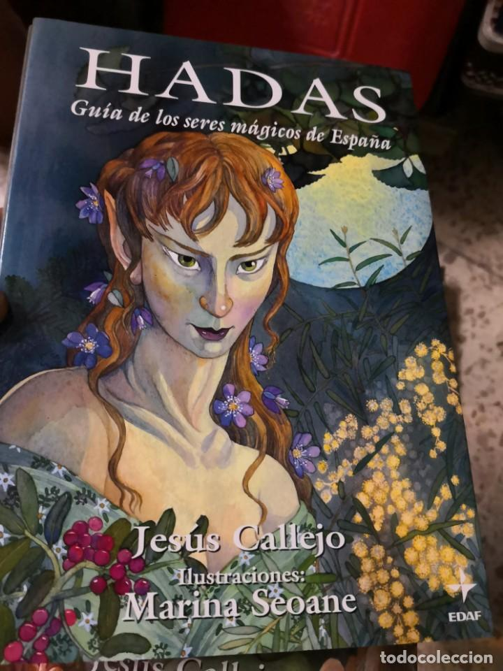 Libros antiguos: COLECCIÓN SERES MÁGICOS DE ESPAÑA 3 TOMOS HADAS DUENDES Y Gnomos. Edaf - Foto 5 - 153269182