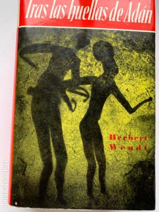 TRAS LAS HUELLAS DE ADÁN (Libros antiguos (hasta 1936), raros y curiosos - Literatura - Narrativa - Ciencia Ficción y Fantasía)