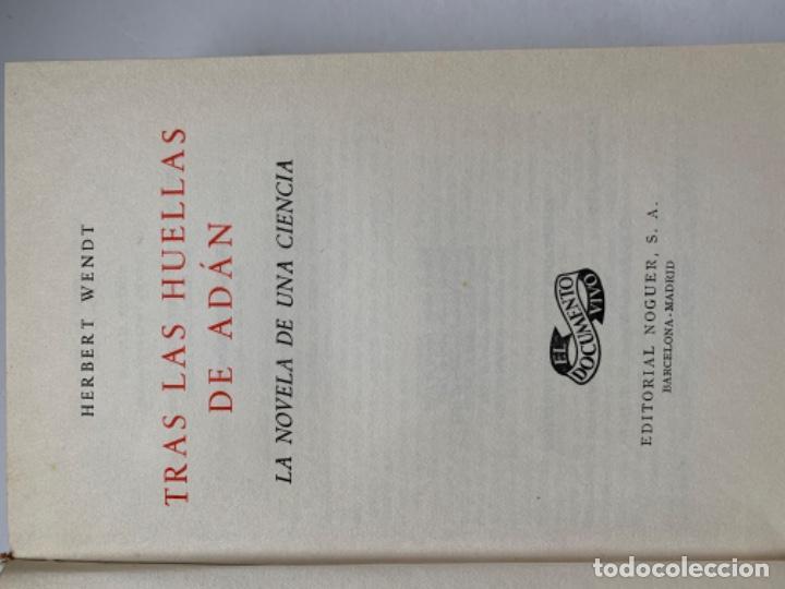 Libros antiguos: Tras las huellas de Adán - Foto 2 - 193815612
