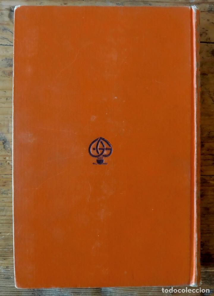 Libros antiguos: TARZÁN ENTRE PIGMEOS - Tapa dura - 1929 - Gustavo Gili - Buen estado - Foto 3 - 250216935