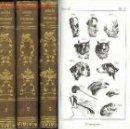 Libros antiguos: 1838: FISIOLOGIA COMPARADA. Lote 26535628
