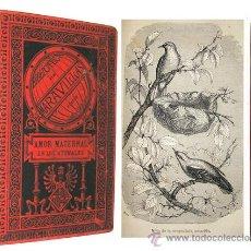 Libros antiguos: 1885 - HISTORIA NATURAL - EL AMOR EN LOS ANIMALES - LAMINAS. Lote 18594249