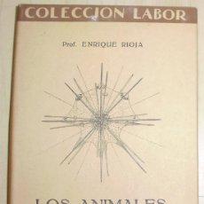 Libros antiguos: LOS ANIMALES MARINOS COLECCION LABOR 1.929 - - PECES ICTIOLOGÍA - - MIRA EL INDICE. Lote 26719916