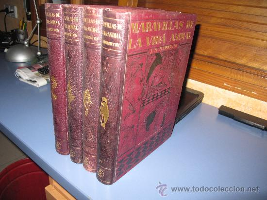 MARAVILLAS DE LA VIDA ANIMAL -4 TOMOS -COMPLETO Y POR J.A. HAMMERTON (Libros Antiguos, Raros y Curiosos - Ciencias, Manuales y Oficios - Bilogía y Botánica)