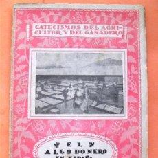 Libros antiguos: EL ALGODONERO EN ESPAÑA - DOMINGO SALDAÑA Y SOLANAS - CALPE. 1921. Lote 28436471