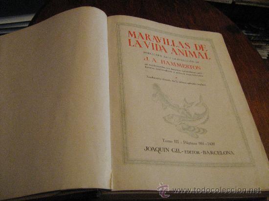 Libros antiguos: MARAVILLAS DE LA VIDA ANIMAL - TOMO III - JOAQUÍN GIL EDITOR - BARCELONA, 1930 - Foto 3 - 28589730