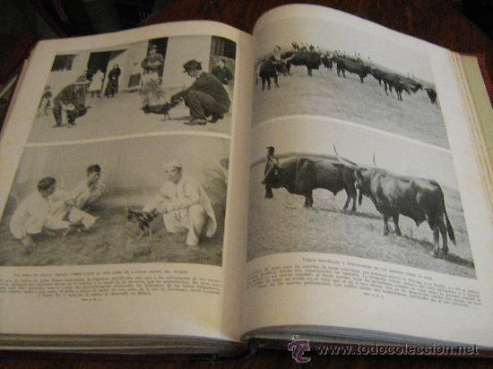 Libros antiguos: MARAVILLAS DE LA VIDA ANIMAL - TOMO III - JOAQUÍN GIL EDITOR - BARCELONA, 1930 - Foto 12 - 28589730