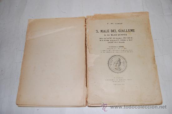 IL MALE DEL GIALLUME G. DEL GUERCIO RM30865 (Libros Antiguos, Raros y Curiosos - Ciencias, Manuales y Oficios - Bilogía y Botánica)