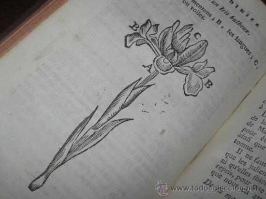 Libros antiguos: Le jardinier fleuriste, Liger, 1787. Contine 12 grabados desplegables. - Foto 13 - 29413500