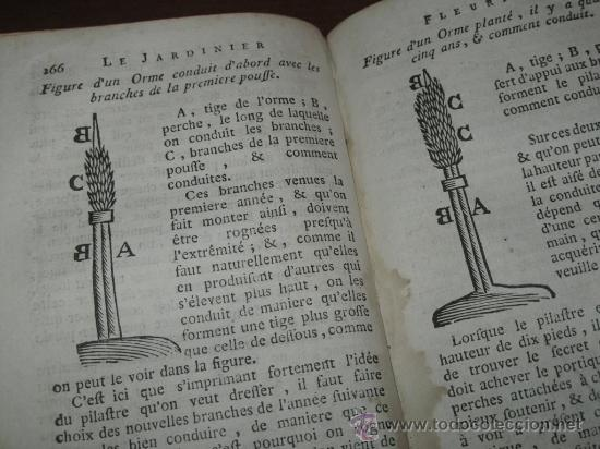 Libros antiguos: Le jardinier fleuriste, Liger, 1787. Contine 12 grabados desplegables. - Foto 17 - 29413500
