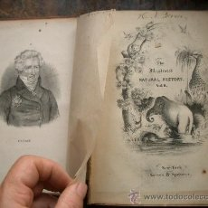Libros antiguos: ANTIGUO LIBRO CON MUCHOS GRABADOS LITOGRÁFICOS DE HISTORIA NATURAL. Lote 32137824