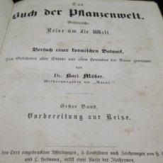 Libros antiguos: BUCH DER PFLANZENWELT ( KARL MÜLLER) 1857 LIBRO DE BOTANICA EN ALEMAN. GASTOS DE ENVIO INCLUIDOS. Lote 32880300
