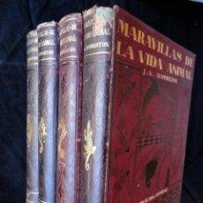 Libros antiguos: MARAVILLAS DE LA VIDA ANIMAL, POR J. A. HAMMERTON. 4 TOMOS. 1ª EDICIÓN.. Lote 34068179