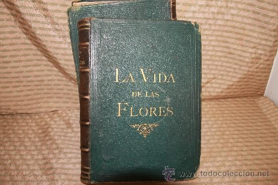 2239- LA VIDA DE LAS FLORES. P. G. S XIX. S/F. FALTO DE PAGINAS. 2 TOMOS. (Libros Antiguos, Raros y Curiosos - Ciencias, Manuales y Oficios - Bilogía y Botánica)