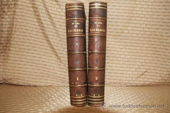 Libros antiguos: 2239- LA VIDA DE LAS FLORES. P. G. S XIX. S/F. FALTO DE PAGINAS. 2 TOMOS. - Foto 2 - 35228843