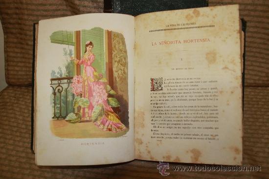 Libros antiguos: 2239- LA VIDA DE LAS FLORES. P. G. S XIX. S/F. FALTO DE PAGINAS. 2 TOMOS. - Foto 5 - 35228843