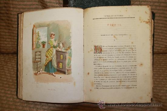 Libros antiguos: 2239- LA VIDA DE LAS FLORES. P. G. S XIX. S/F. FALTO DE PAGINAS. 2 TOMOS. - Foto 6 - 35228843