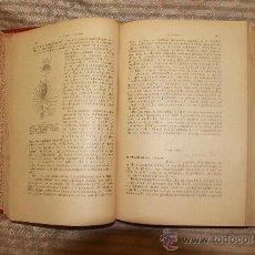 Libros antiguos: 2310- PROLEGOMENOS DE ZOOLOGIA. ODON DE BUEN. S/F. FALTO DE LA PRIMERA PAGINA. . Lote 35372542