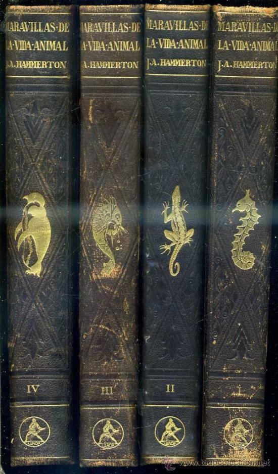 HAMMERTON : MARAVILLAS DE LA VIDA ANIMAL - 4 TOMOS (JOAQUÍN GIL, 1930) (Libros Antiguos, Raros y Curiosos - Ciencias, Manuales y Oficios - Bilogía y Botánica)