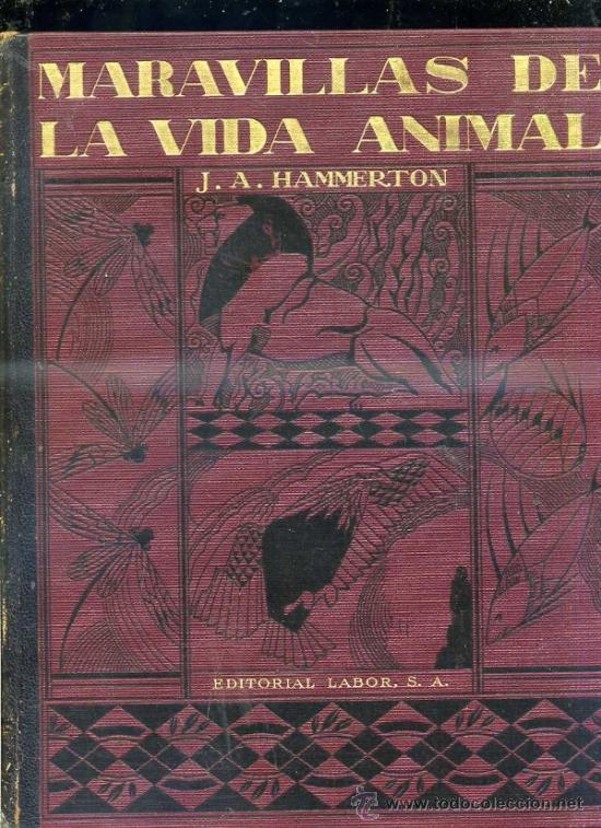Libros antiguos: HAMMERTON : MARAVILLAS DE LA VIDA ANIMAL - 4 TOMOS (JOAQUÍN GIL, 1930) - Foto 4 - 35617848