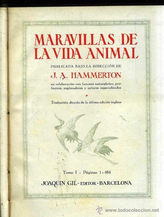 Libros antiguos: HAMMERTON : MARAVILLAS DE LA VIDA ANIMAL - 4 TOMOS (JOAQUÍN GIL, 1930) - Foto 3 - 35617848