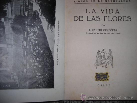 Libros antiguos: LA VIDA DE LAS FLORES, por J. DANTIN CERECEDA - CALPE - España - 1922 - RARA EDICION! - Foto 2 - 36493782