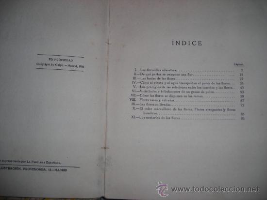 Libros antiguos: LA VIDA DE LAS FLORES, por J. DANTIN CERECEDA - CALPE - España - 1922 - RARA EDICION! - Foto 3 - 36493782