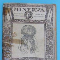 Libros antiguos: MINERVA. VOLUM I. OCEANOGRAFÍA. PER JOSEP MALUQUER.. Lote 37989870