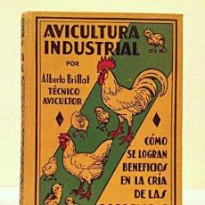 Libros antiguos: AVICULTURA INDUSTRIAL - CRÍA DE GALLINAS / ALBERTO BRILLAT /1930. Lote 38004812