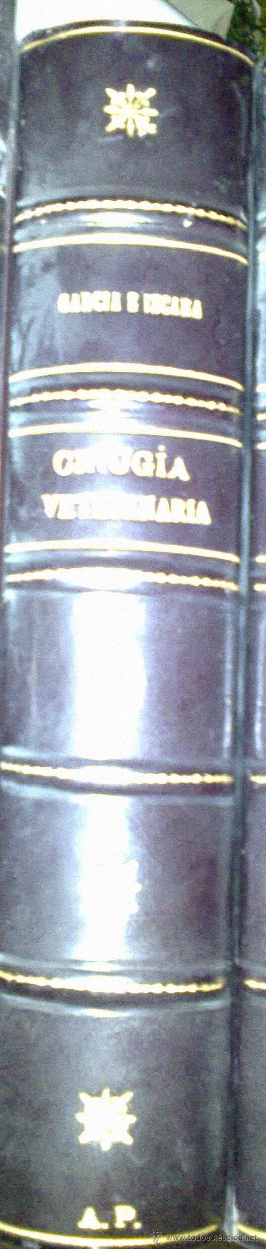 CIRUGÍA VETERINARIA. GARCÍA E IZCARA 1916 (Libros Antiguos, Raros y Curiosos - Ciencias, Manuales y Oficios - Bilogía y Botánica)