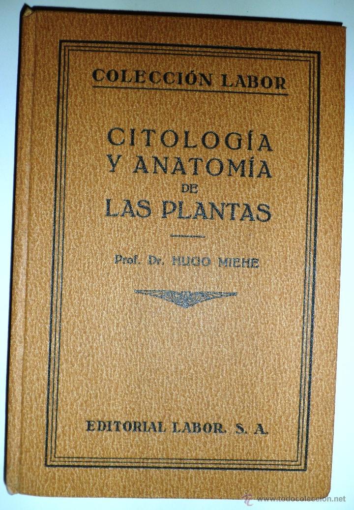 CITOLOGÍA Y ANATOMÍA DE LAS PLANTAS. HUGO MIEHE. PRIMERA EDICIÓN (1928) VER INDICE (Libros Antiguos, Raros y Curiosos - Ciencias, Manuales y Oficios - Bilogía y Botánica)