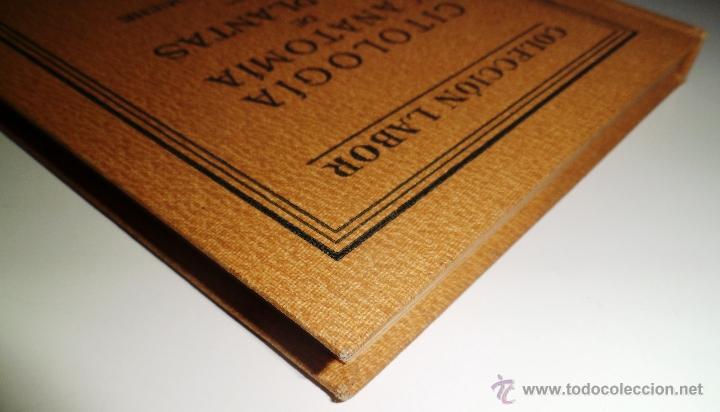 Libros antiguos: CITOLOGÍA Y ANATOMÍA DE LAS PLANTAS. HUGO MIEHE. PRIMERA EDICIÓN (1928) VER INDICE - Foto 12 - 39386139