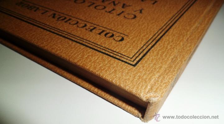 Libros antiguos: CITOLOGÍA Y ANATOMÍA DE LAS PLANTAS. HUGO MIEHE. PRIMERA EDICIÓN (1928) VER INDICE - Foto 11 - 39386139