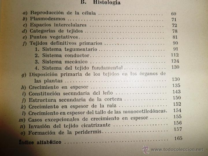 Libros antiguos: CITOLOGÍA Y ANATOMÍA DE LAS PLANTAS. HUGO MIEHE. PRIMERA EDICIÓN (1928) VER INDICE - Foto 3 - 39386139