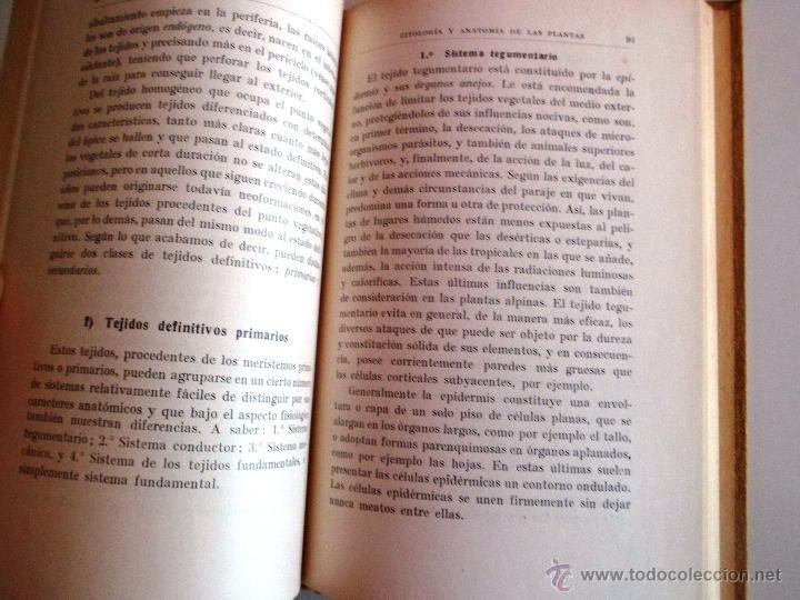 Libros antiguos: CITOLOGÍA Y ANATOMÍA DE LAS PLANTAS. HUGO MIEHE. PRIMERA EDICIÓN (1928) VER INDICE - Foto 5 - 39386139