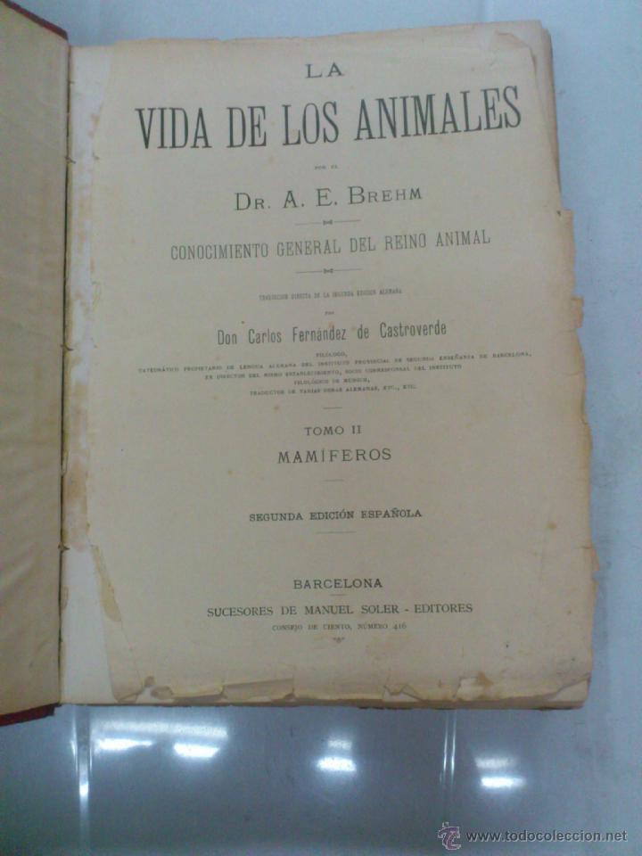 Libros antiguos: LA VIDA DE LOS ANIMALES. A.E.BREHM. TOMO II. MAMIFEROS. SEGUNDA EDICION ESPAÑOLA. FINALES S.XIX. - Foto 2 - 40421322