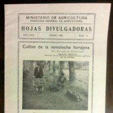 Libros antiguos: HOJAS DIVULGADORAS AÑO ENERO 1935 NÚM. 2, CULTIVO DE LA REMOLACHA FORRAJERA. RICARDO DE ESCAURIAZA. . Lote 42161285