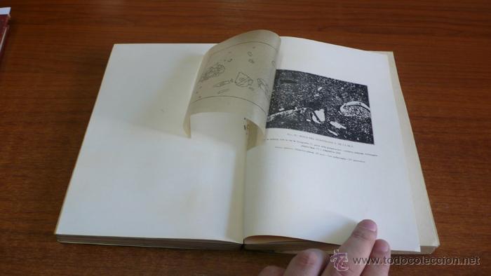 Libros antiguos: BOLETIN DEL INSTITUTO GEOLOGICO DE ESPAÑA. TOMO XLII-TOMO II. 1921.TERCERA SERIE. MARRUECOS. - Foto 4 - 42230768