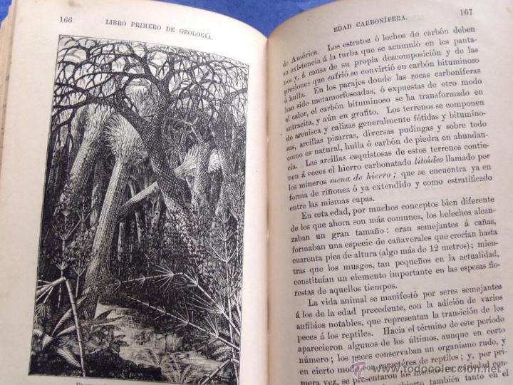 Libros antiguos: Mineralogia y Geologia - Dr. Juan Garcia Purón 1900 - Foto 15 - 42242050