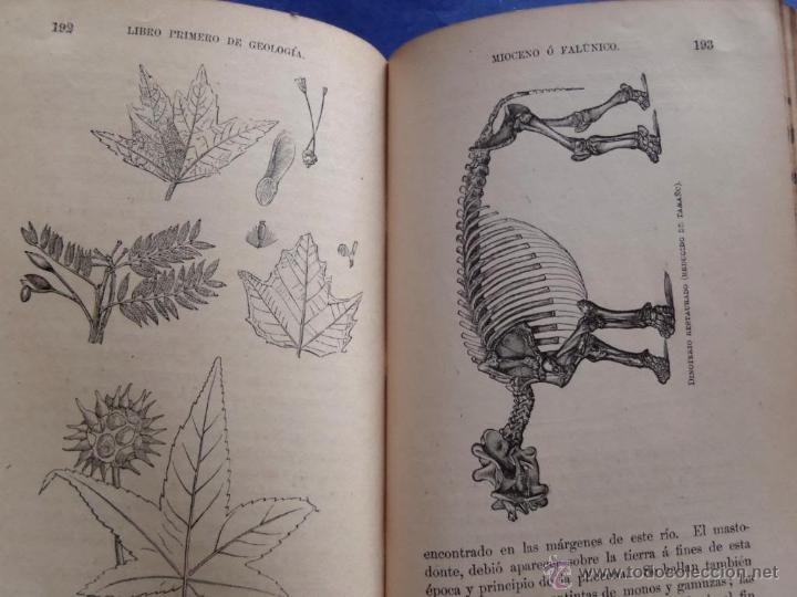 Libros antiguos: Mineralogia y Geologia - Dr. Juan Garcia Purón 1900 - Foto 19 - 42242050