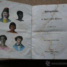 Libros antiguos: NATURGESCHICHTE FÜR DIE JUGEND BEIDERLEI GESCHLECHTS. MARTIN (F.) STUTTGART, SCHMIDT & SPRING, 1864.. Lote 42479610