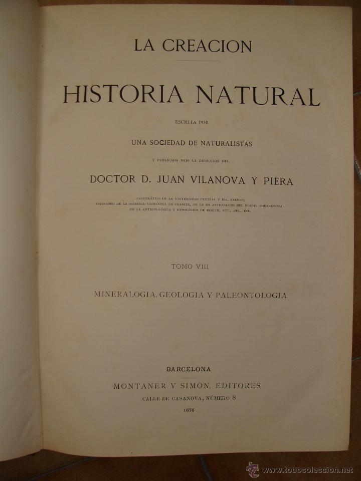 Libros antiguos: HISTORIA NATURAL VILANOVA Y PIERA. 8 TOMOS. 1872. 3260 ILUSTRACIONES LITOGRÁFICAS Y 105 CRÓMOLITOGRA - Foto 2 - 44073956