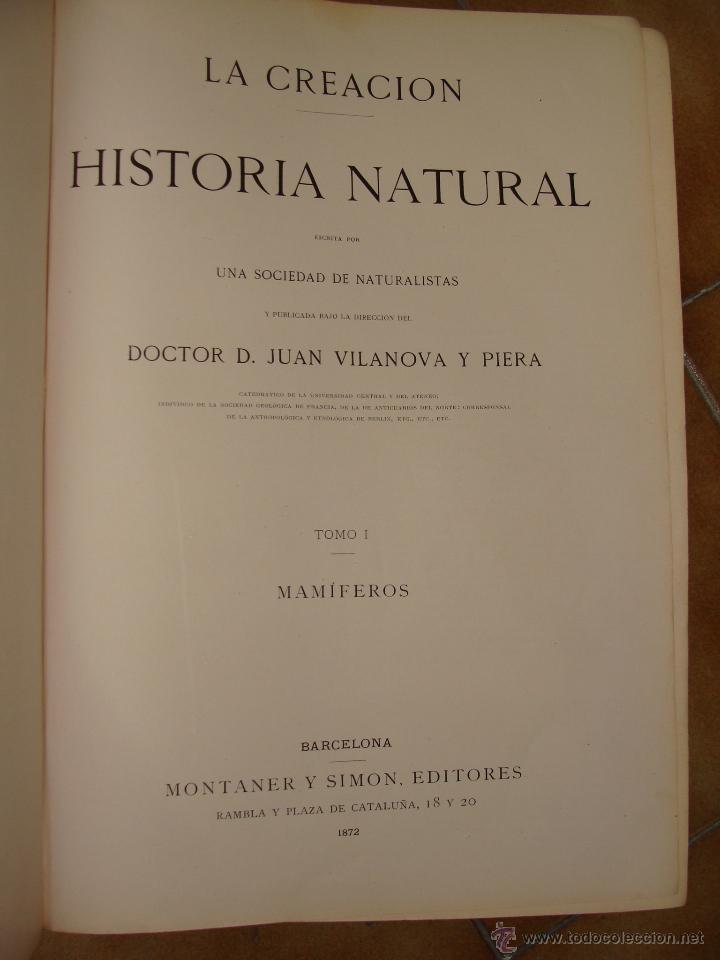 Libros antiguos: HISTORIA NATURAL VILANOVA Y PIERA. 8 TOMOS. 1872. 3260 ILUSTRACIONES LITOGRÁFICAS Y 105 CRÓMOLITOGRA - Foto 5 - 44073956