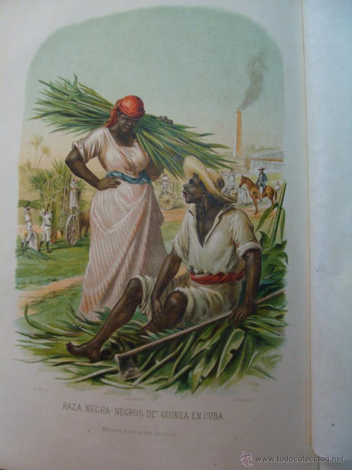 Libros antiguos: HISTORIA NATURAL VILANOVA Y PIERA. 8 TOMOS. 1872. 3260 ILUSTRACIONES LITOGRÁFICAS Y 105 CRÓMOLITOGRA - Foto 11 - 44073956